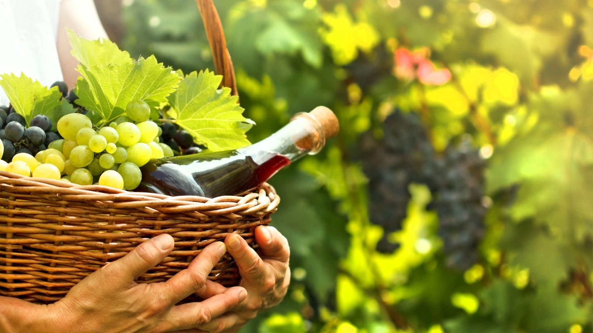 was macht einen Wein vegan